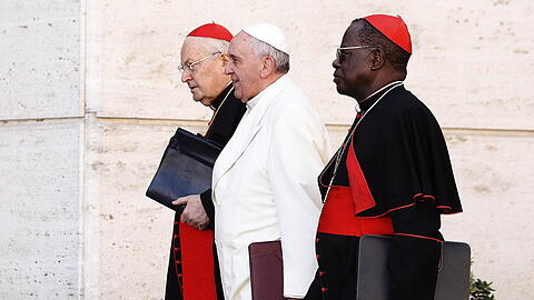 Extraordinary Consistory with Pope Francis