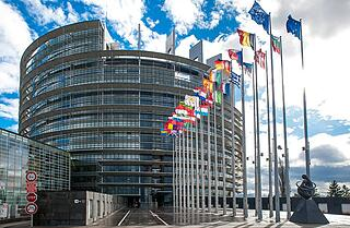 EP building Strasbourg, flags